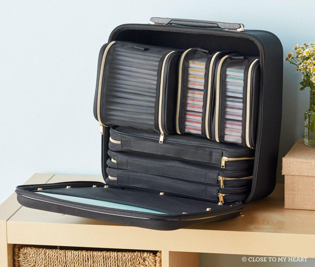 Designer Travel Organizer Cases